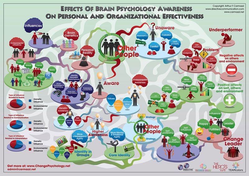 infographic_coloredbrain-s