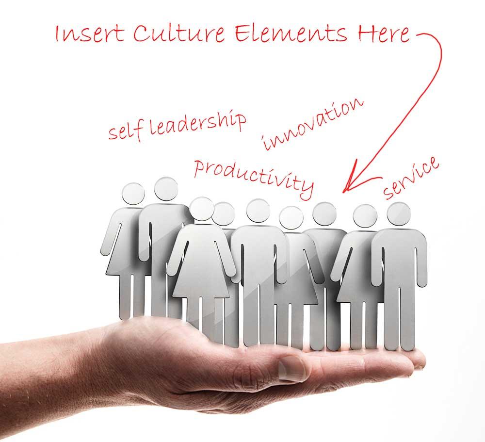 Organizational Culture & Mission Statement