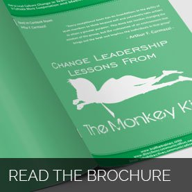 monkey-king-brochure