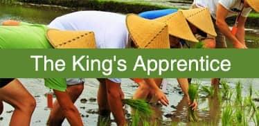 The King,s Apprentice