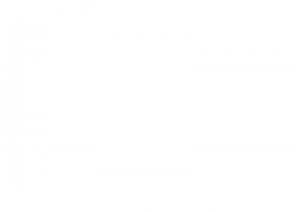 leading organizational culture change videos