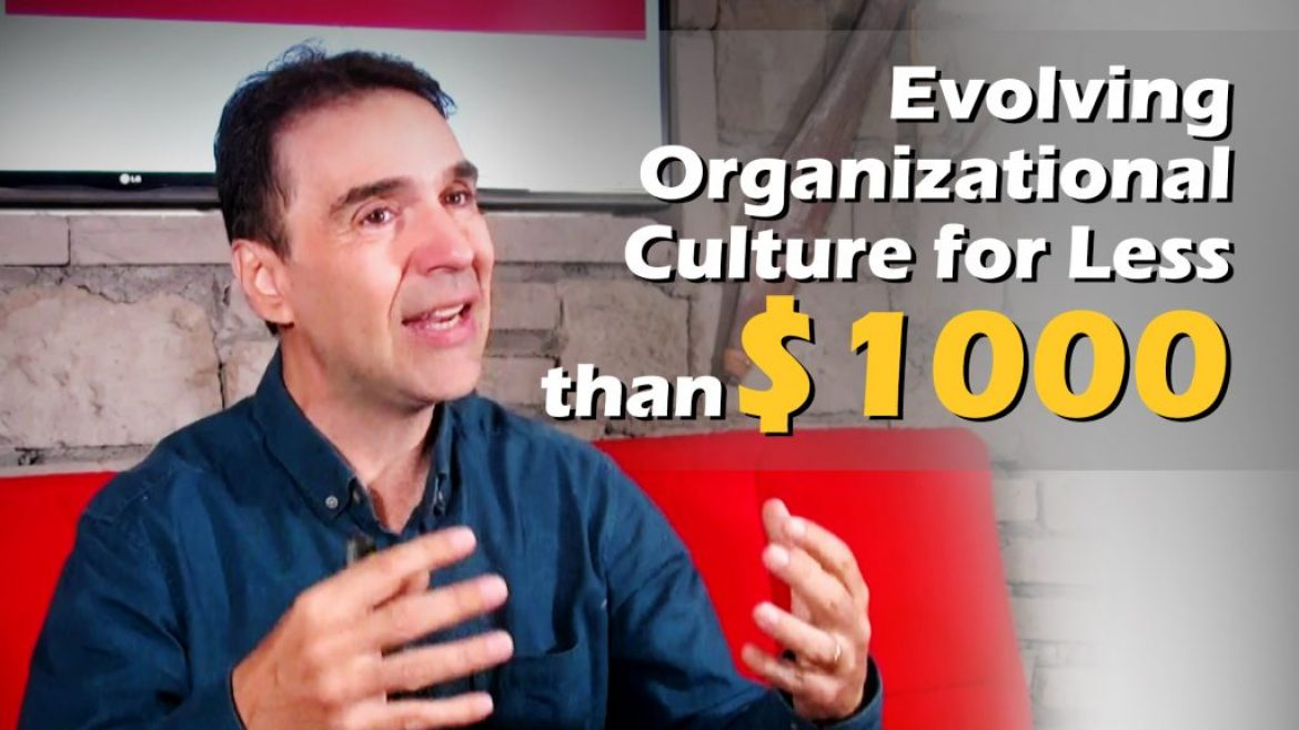 Evolving Organizational Culture for Less than $1000